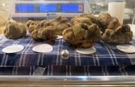 Une fortune en truffes