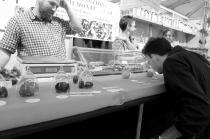 Le marché aux truffes