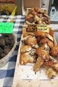 Bolets et truffes noires