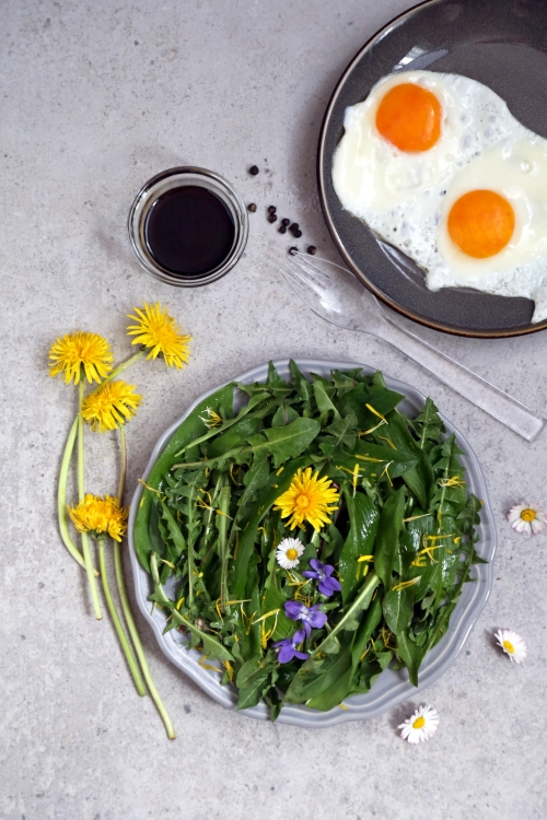 Salade de pissenlit et ail des ours - le printemps dans votre assiette - delimoon.com