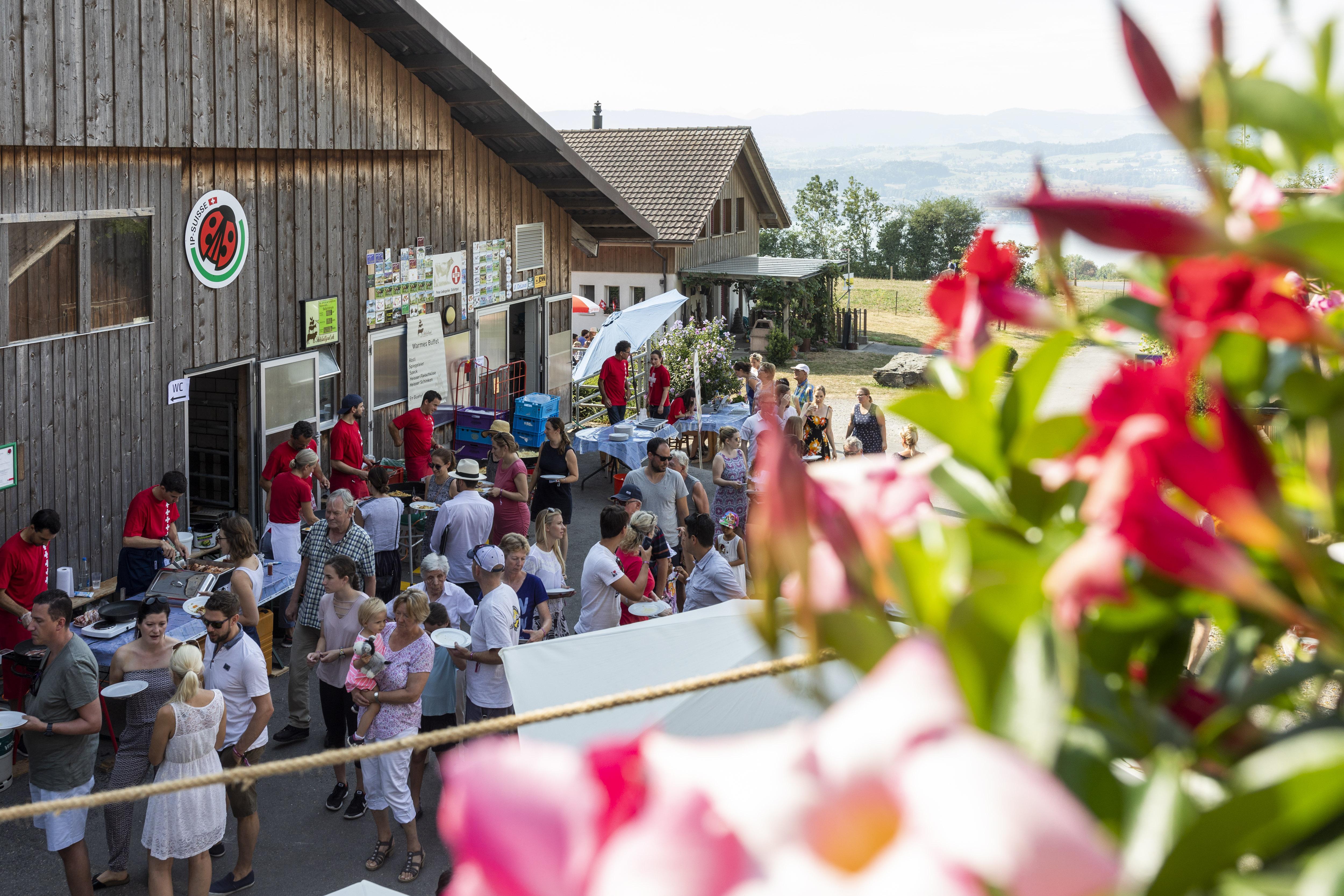 Brunch à la ferme le 1er août - une idée de sortie qui plaira aux petits comme aux grands -delimoon.com