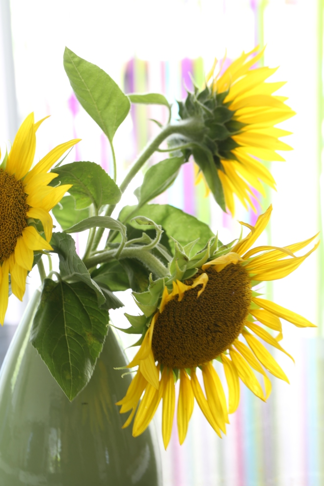 Les tournesols de - delimoon.com - sunflowers