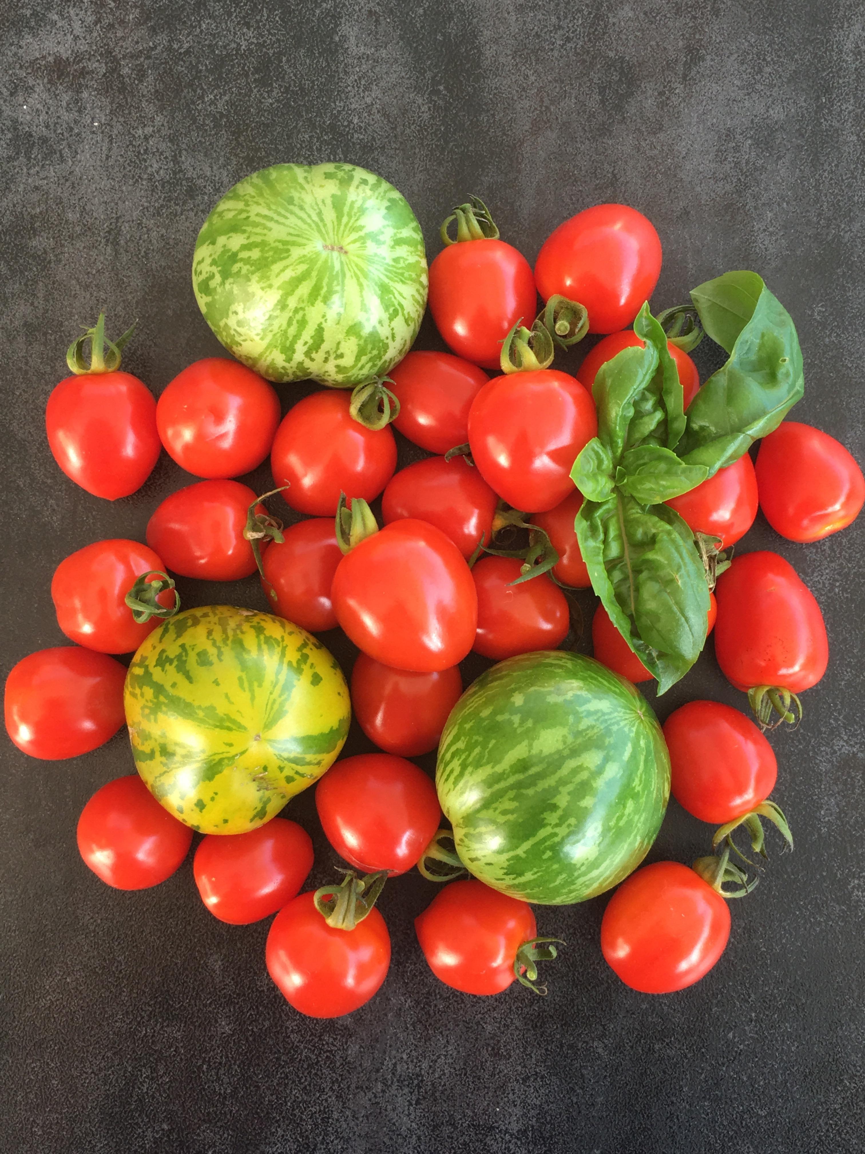 Tomates de mon jardin - Delimoon.com