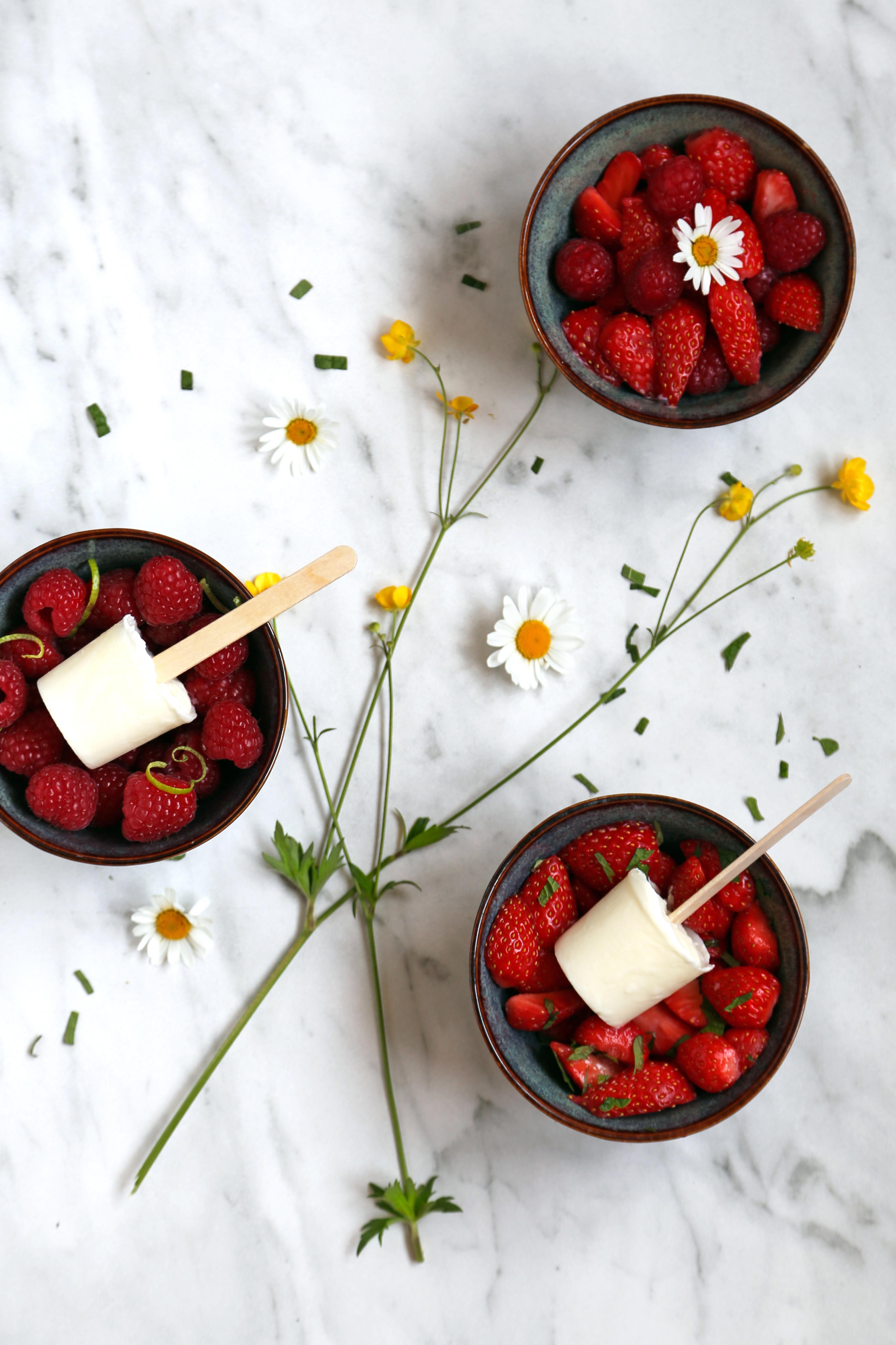 Sucettes de Petits Suisses,salade de fruits rouges à faire avec les enfants