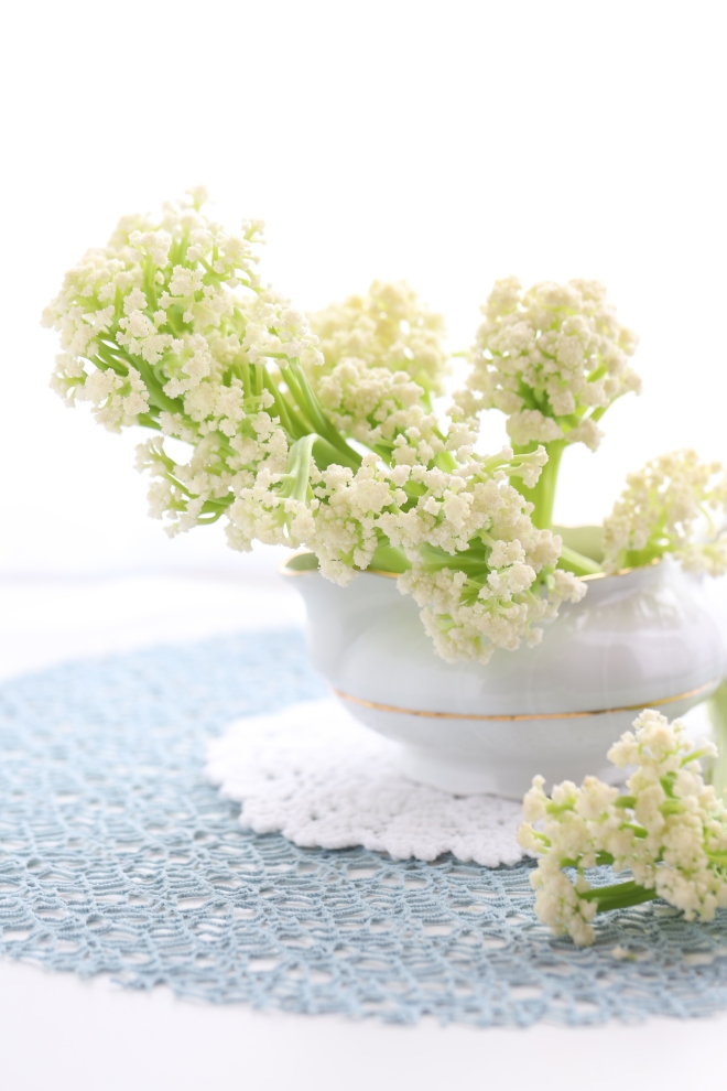 Fleurs de choux ou choux-fleurs