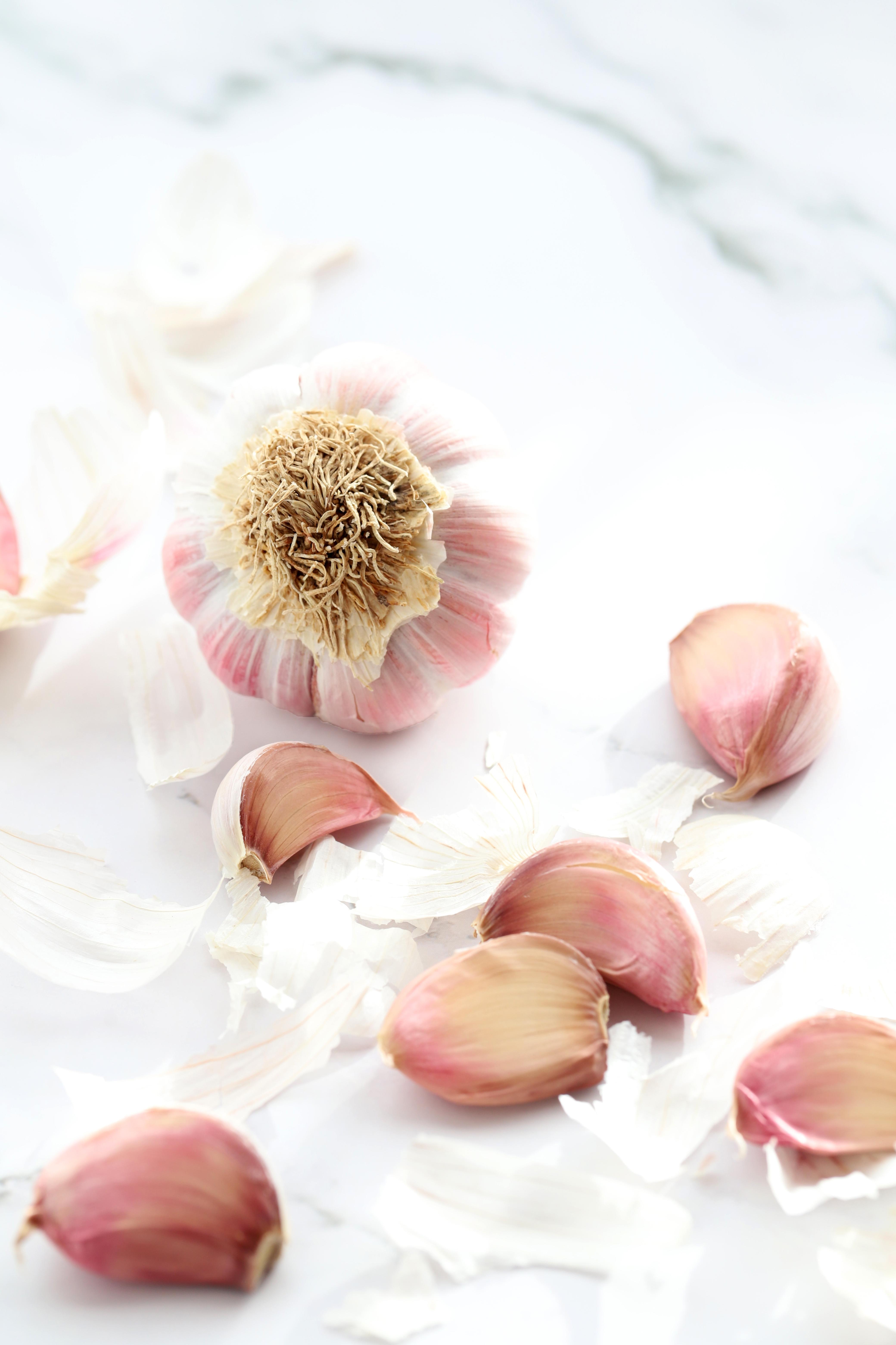 ail - garlic - delimoon.com