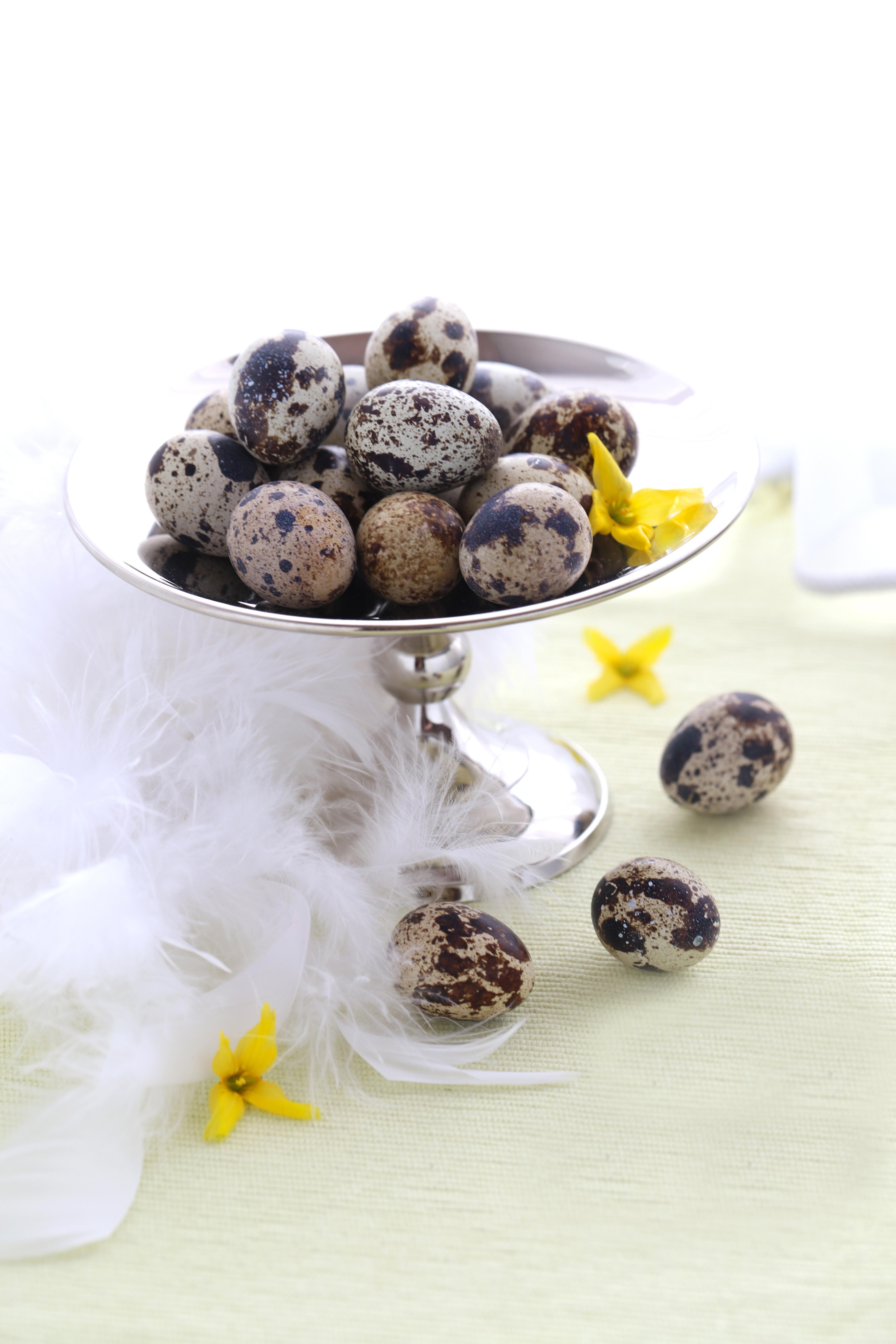 oeufs de caille - quail eggs - delimoon.com