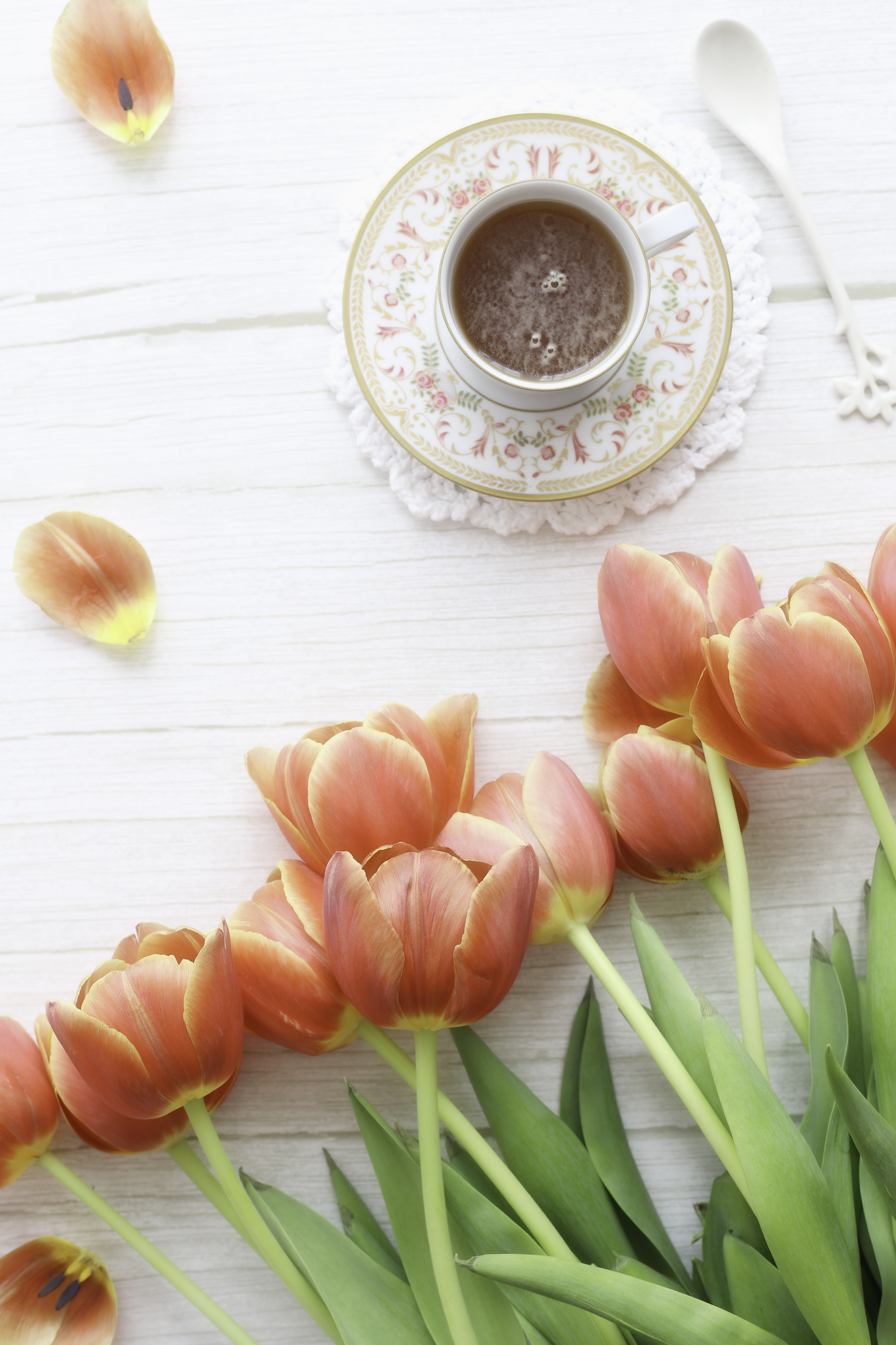 Tea and tulips - delimoon.com