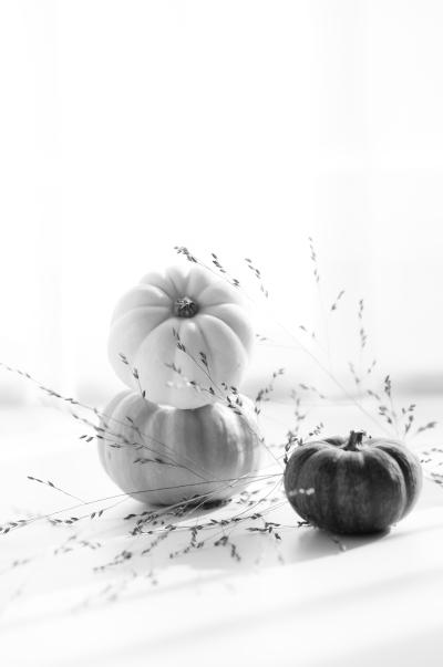Pumpkin pie spices - delimoon.com